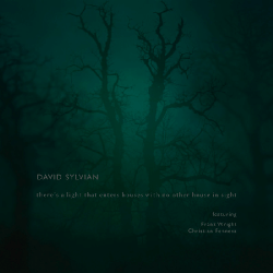 david_sylvian_theres_a_light_that_enters_houses_with_no_other_house_in_sight