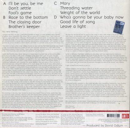 Glen Hansard - This Wild Willing retrocover lp