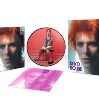 Picture Disc Space Oddity